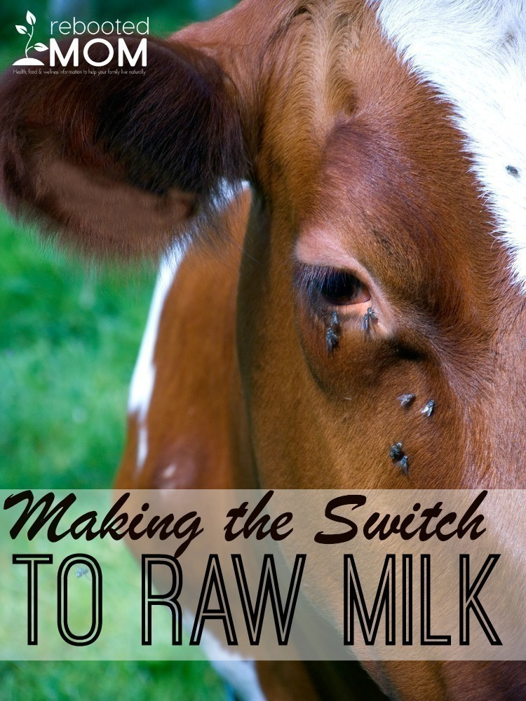 Making the Switch to Raw Milk