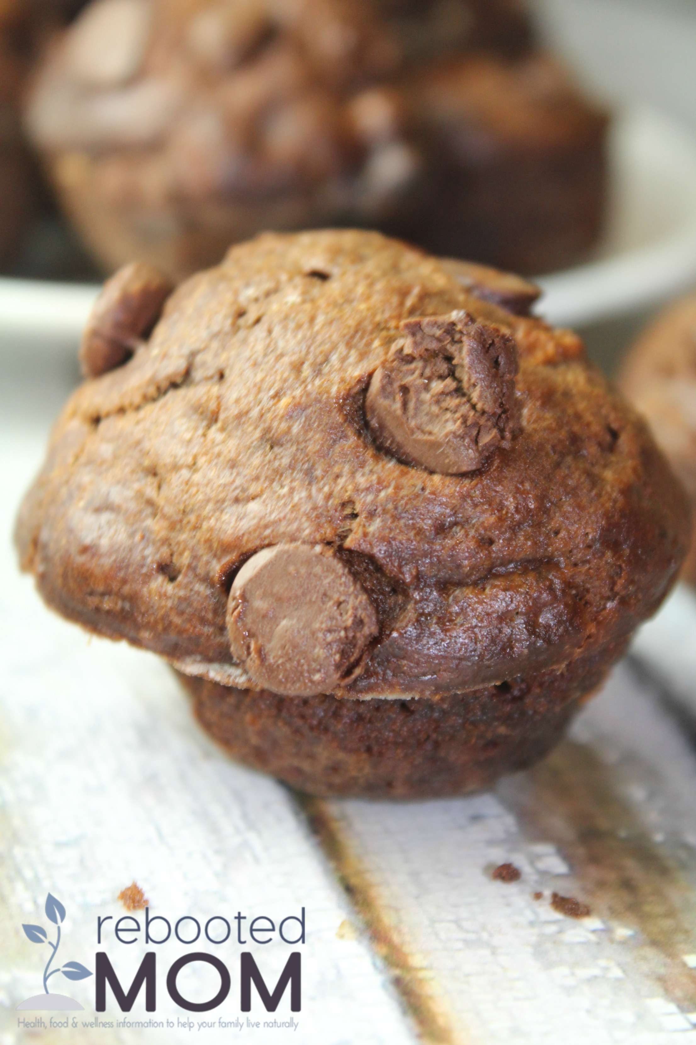 Simple ingredients transformed into beautifully rich, healthy double chocolate zucchini muffins that are perfect for little hands!