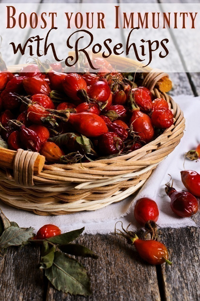 Boost your Immunity with Rosehips