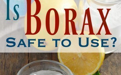 Is Borax Safe to Use