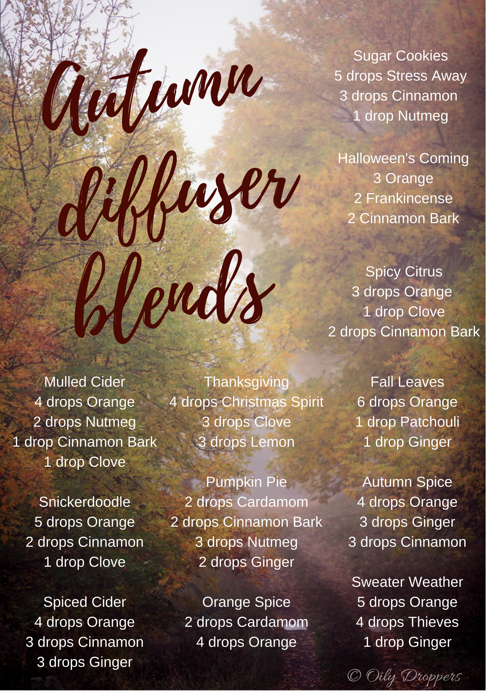Autumn Diffuser Blends Rebooted Mom