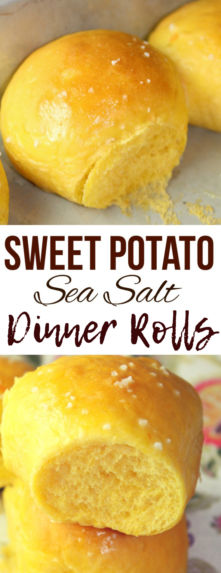 Sweet Potato Sea Salt Rolls that are light, fluffy and full of pumpkin flavor - the perfect accompaniment to Thanksgiving dinner or a bowl of hot soup!