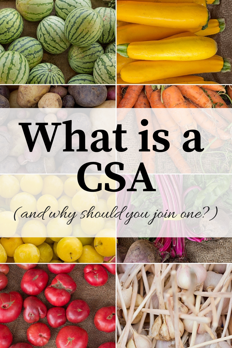 A CSA is one of the best investments you could make in your health. Read more about a CSA and find out how you can join one.