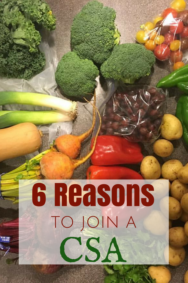 CSAs are growing in popularity - it's a very rewarding and fulfilling relationship between farm and consumer. Here are 6 Reasons to Join a CSA.