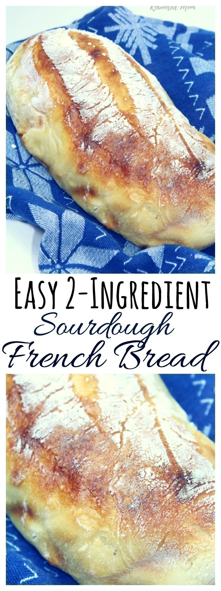 A beautiful loaf of gluten-free sourdough french bread bakes up with just 2 simple ingredients!