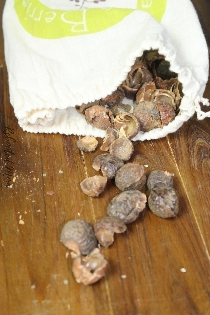 Soap Nuts are a berry shell that naturally contains soap. They grow on the Soap Berry tree in the Himalayas. Find out why they are a wonderful alternative for your laundry care needs.