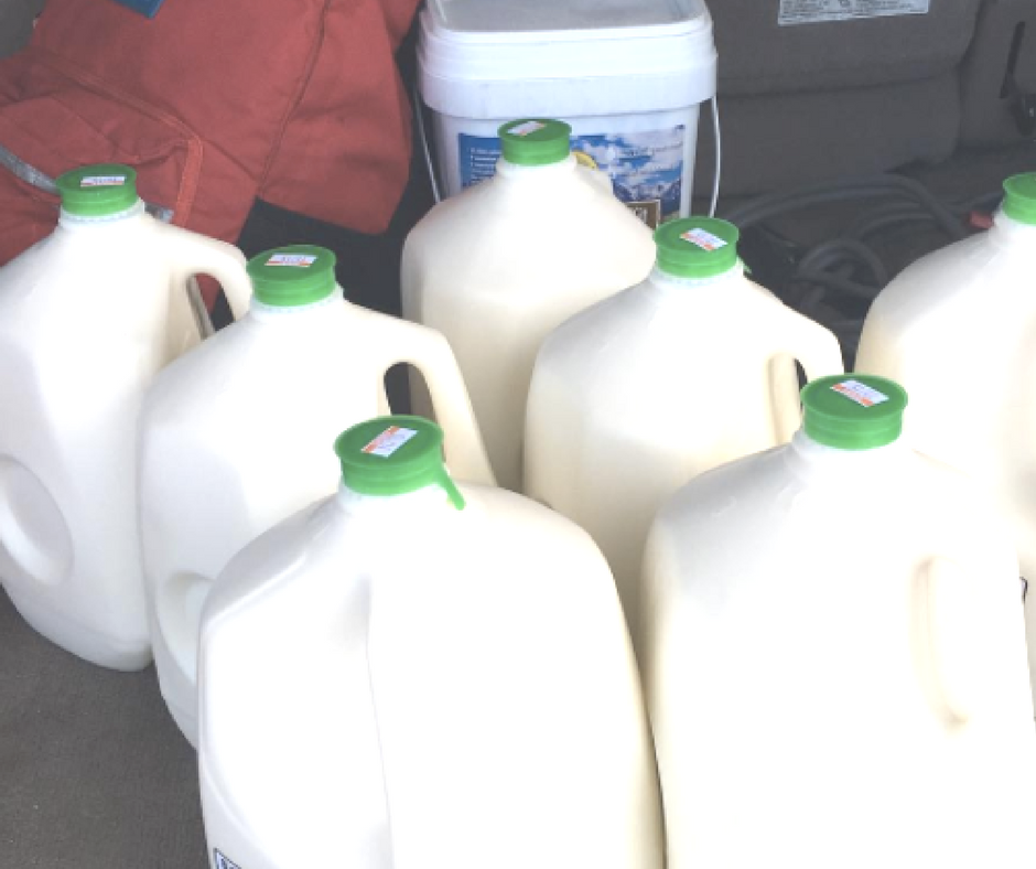 You can actually talk about the benefits of raw milk over, and over, and over... but until you actually have a gallon in front of you, and you pour yourself a glass, you may not be convinced it's for you.