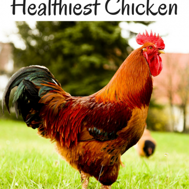 How to Buy the Healthiest Chicken