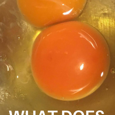 What Does Egg Yolk Color Mean?