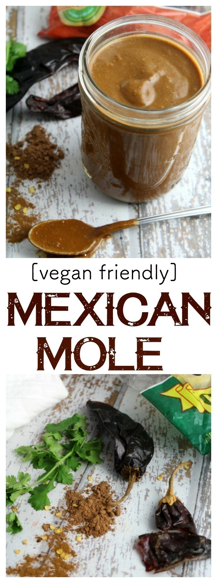 A rich, fragrant mole sauce that is wonderful on meatless enchiladas, tamales, and smothered on chicken. This sauce is vegan friendly and freezes wonderfully!    #vegan #meatless