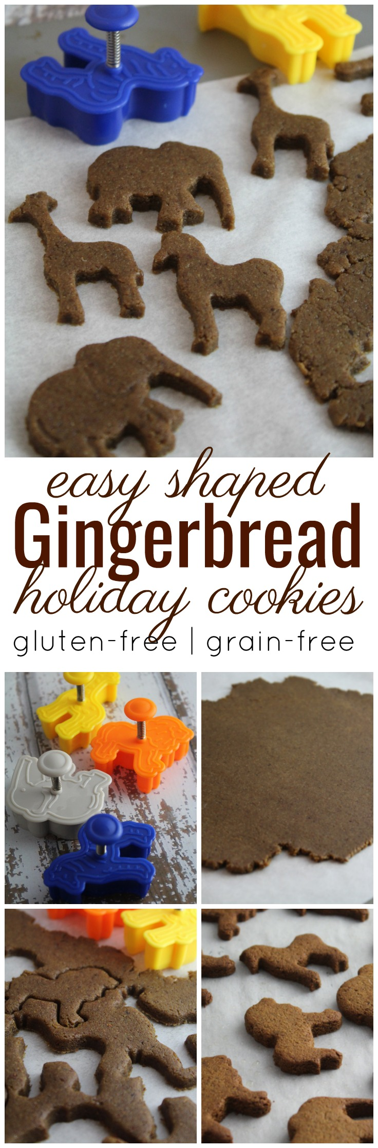 Deliciously adorable rolled gingerbread cookies that are simple to make, bake up quickly and are gluten-free and grain-free.    #holiday #christmas #gluten-free #grain-free #cookies