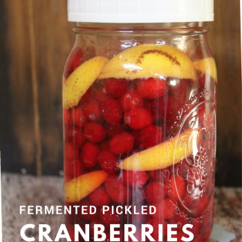 Fermented Pickled Cranberries