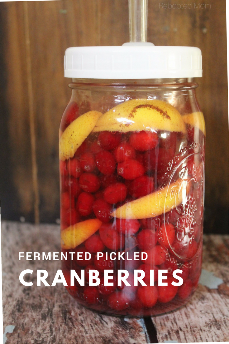 Beautiful red cranberries combined with orange peel, & cinnamon and soaked in a brine to make a healthy, fermented snack that's full of healthy bacteria for good gut health. #fermented #cranberries #pickled