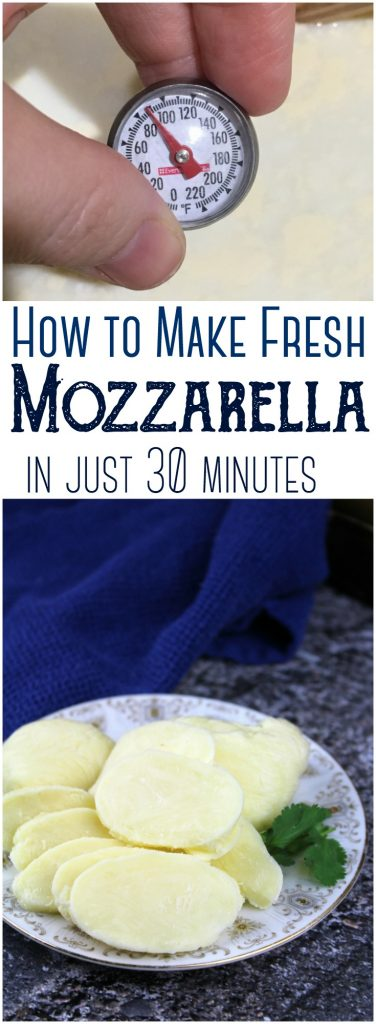 30-Minute Mozzarella