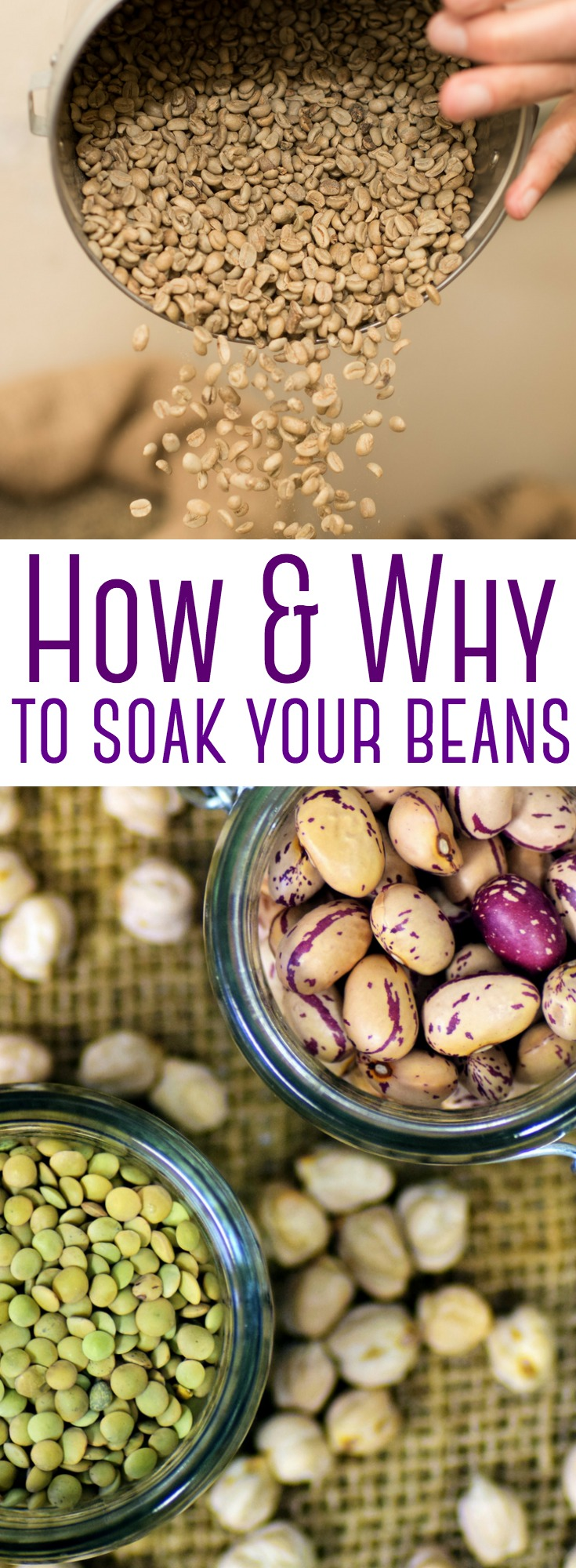 You can make beans successfully with or without soaking them beforehand - but it's not quite that cut & dry. Find out why you need to take that extra step and soak your beans beforehand.     #beans #soaking #soakedbeans #phyticacid #health #wellness