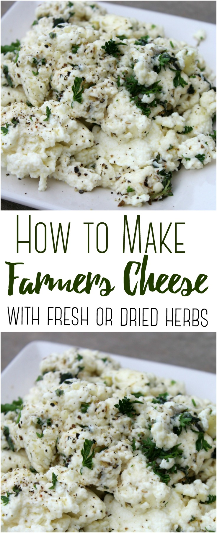Transform a gallon of raw milk into a pound of farmers cheese, flavored with herbs and spices! #rawmilk #cheese #cheesemaking #farmerscheese #homestead