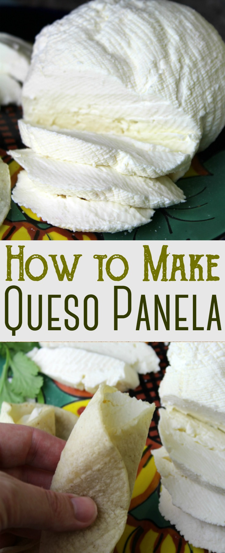 Queso Panela is a white, fresh, and smooth soft Mexican type cheese made with raw milk. Not only is it delicious, it's easy to make at home!