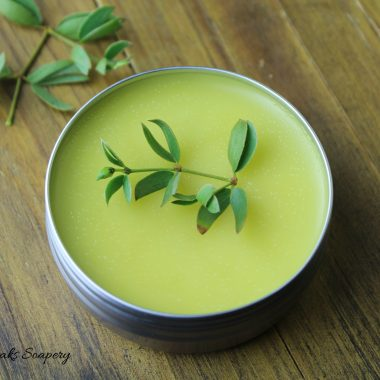 How to Make Chaparral Salve (Creosote)