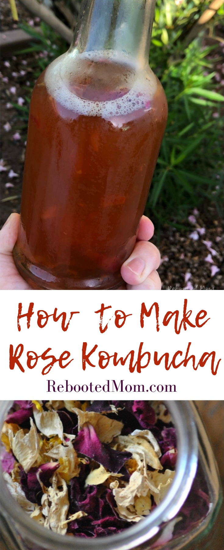 Rose Kombucha is a wonderful, unique flavor for kombucha that's super easy to make! Learn how to second ferment your kombucha with this delicious flavor!