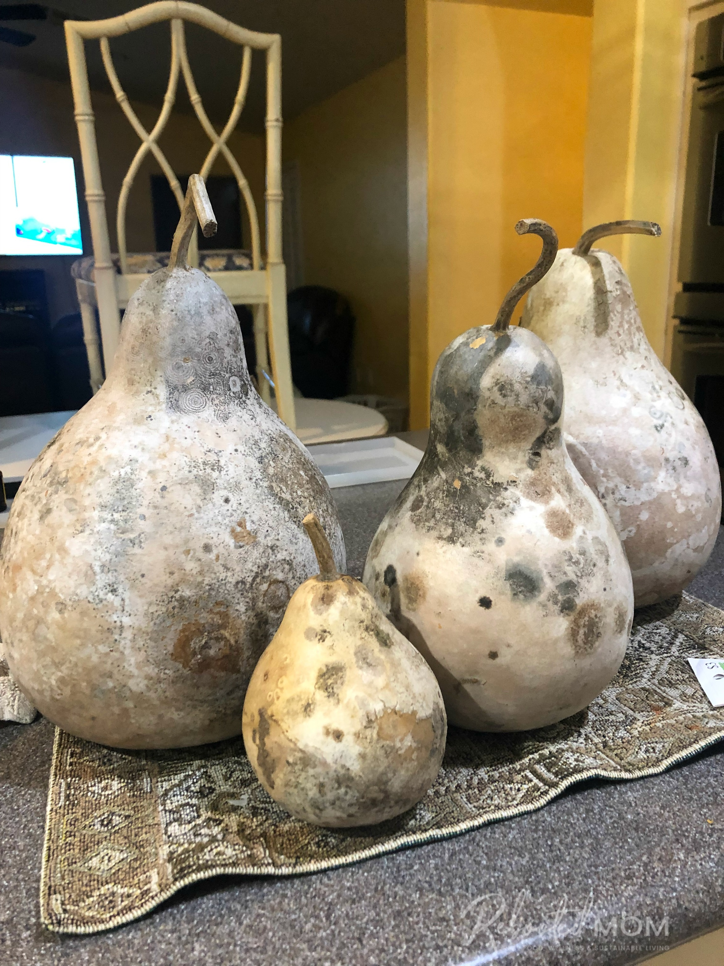 Drying and cleaning gourds for for painting or crafting projects is easy to do yourself at home if you follow a few simple steps.