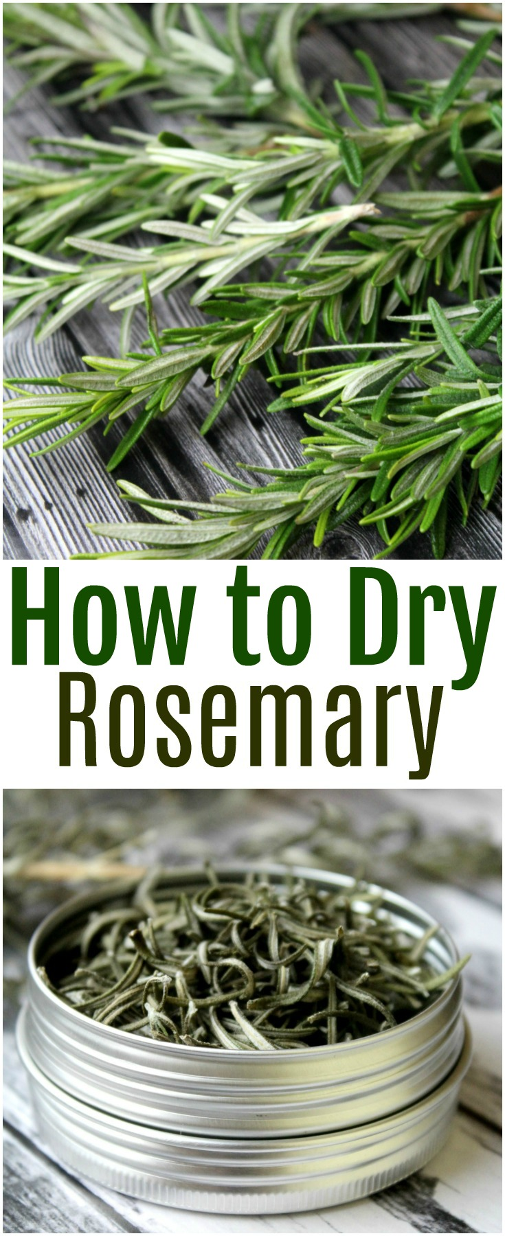 Learn how to dry rosemary in three easy methods - baking in the oven, air drying and using a dehydrator. Keep your rosemary fresh for a very long time.   #rosemary #herbs #foodpreservation #dehydrate #foodprep
