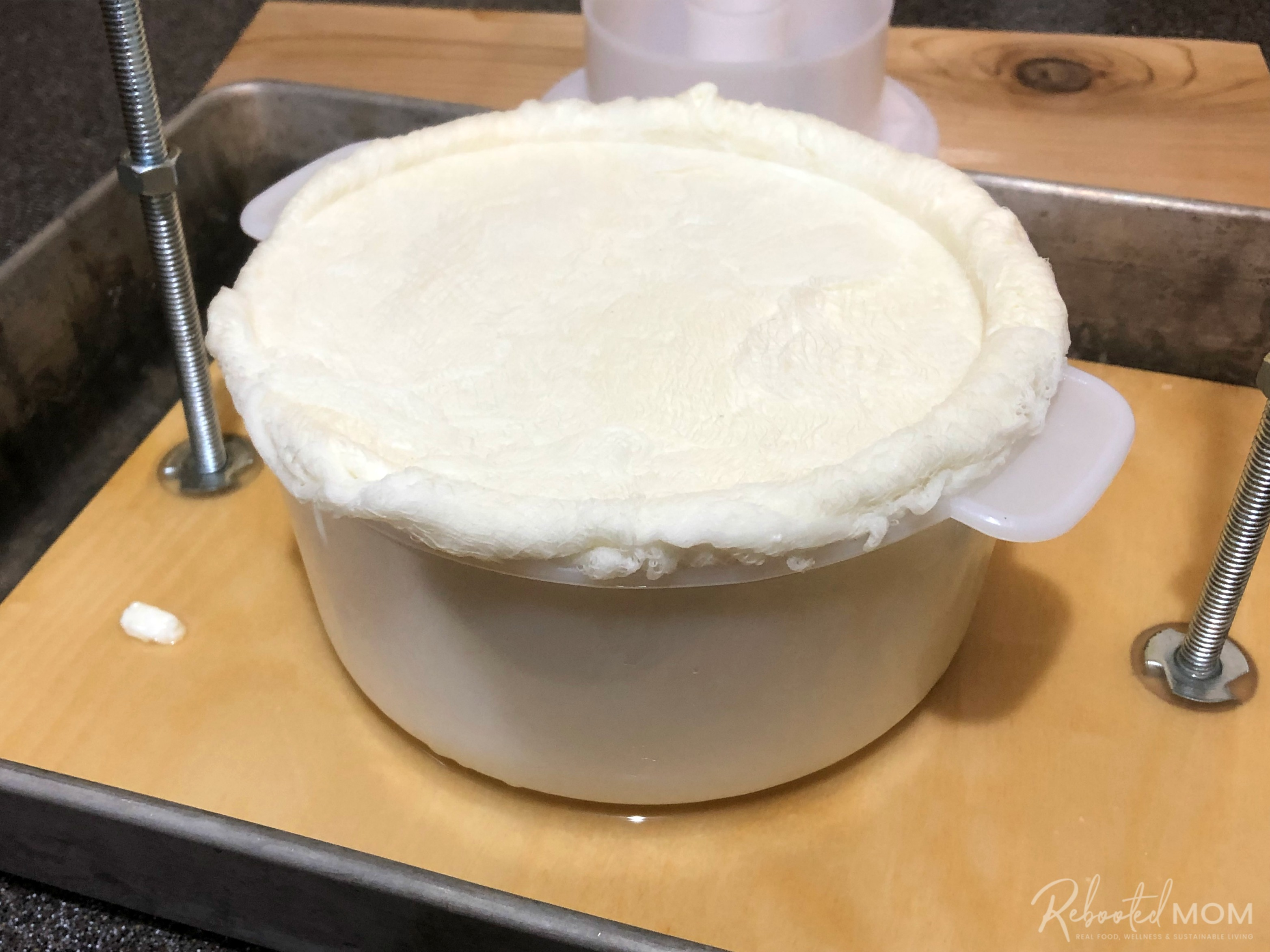 Monterey Jack Cheese - put curds in mold