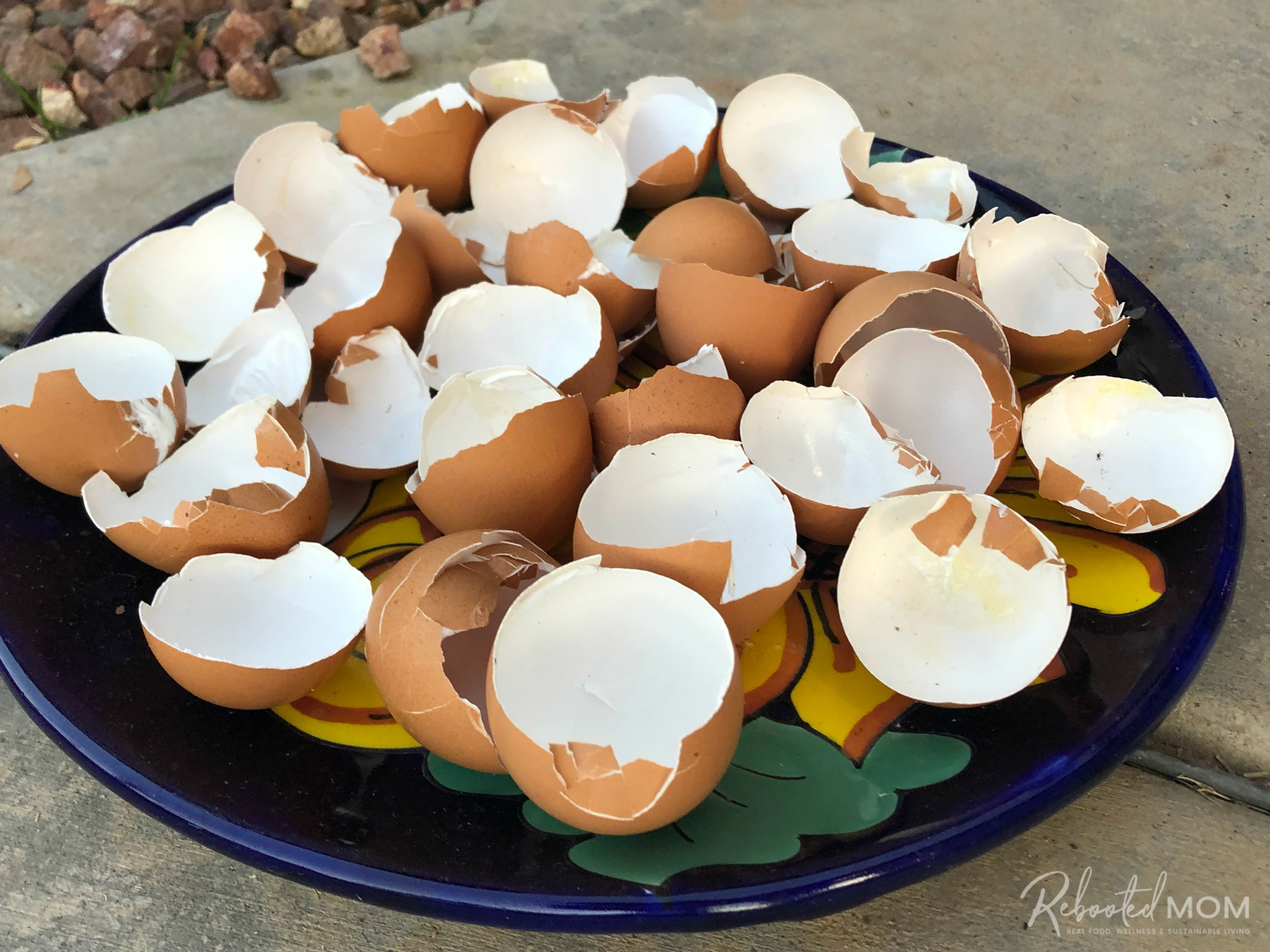 Eggshells drying outside \\ Don't throw those leftover eggshells away! Here are four easy and useful ways to use eggshells in your vegetable and flower garden.