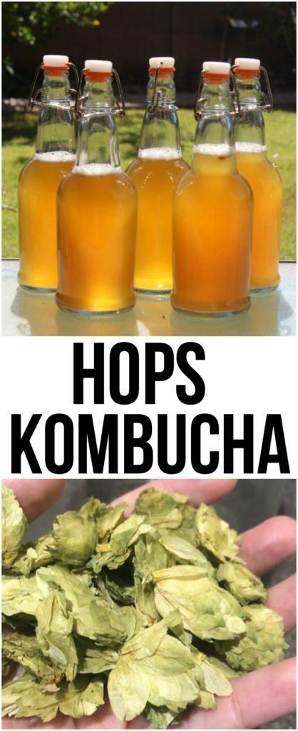 Hops Kombucha