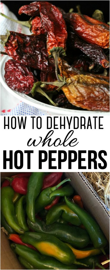 How to Dehydrate Whole Hot Peppers