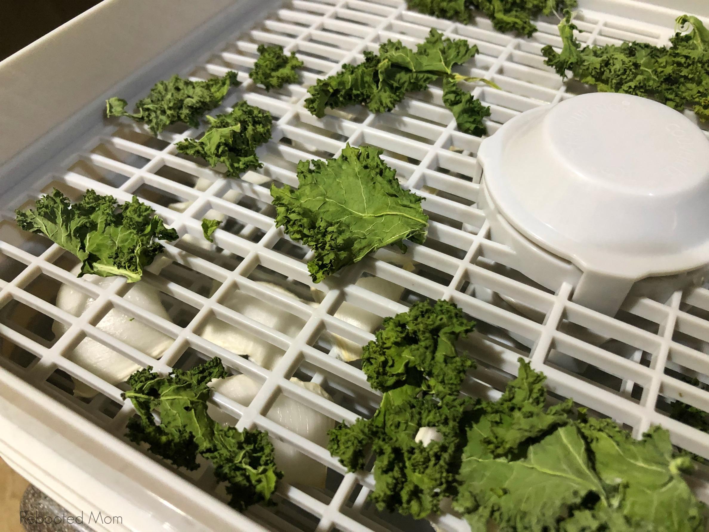 Kale on a Dehydrator Tray