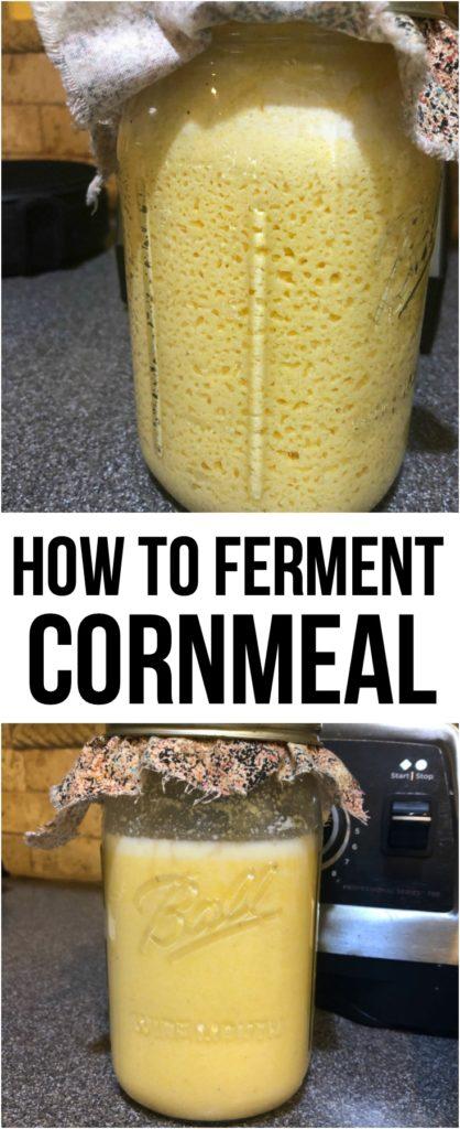 Ferment Cornmeal