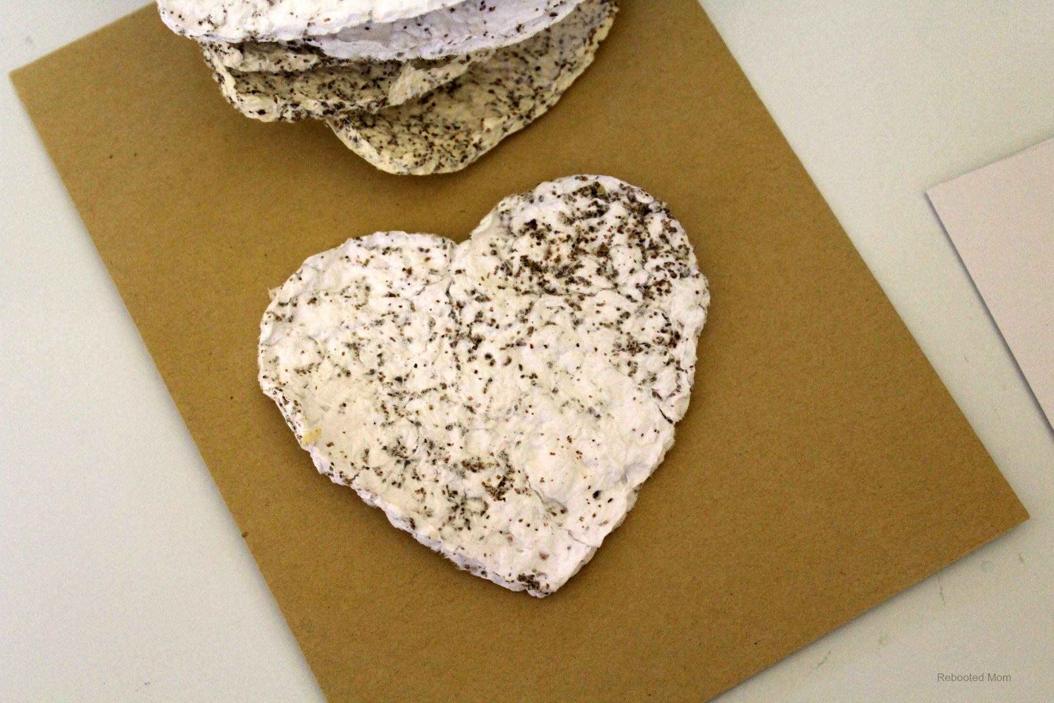 DIY Seed Paper